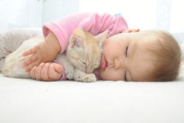 baby sleeping with kitten